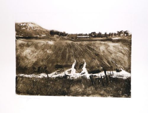 P2_Monotype, After the rain, 50X39, 2012