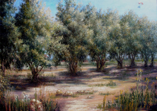 Olive-trees-&-flyer-70x50-oil-on-canvas
